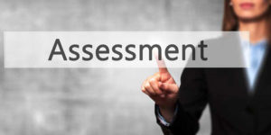 Business Assessment Services